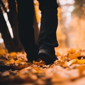 wandelcoaching nederland Klaas en zijn verdriet